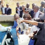 govt-plans-to-zero-rate-fish-food-inputs