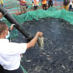 fish-stocking-at-kafue-gorge-under-review